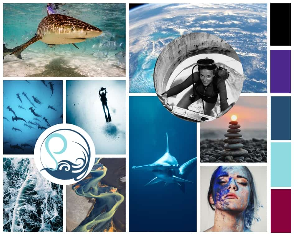 Soulwater Productions mood board blue Syliva Earl sharks tranquility ocean conservation