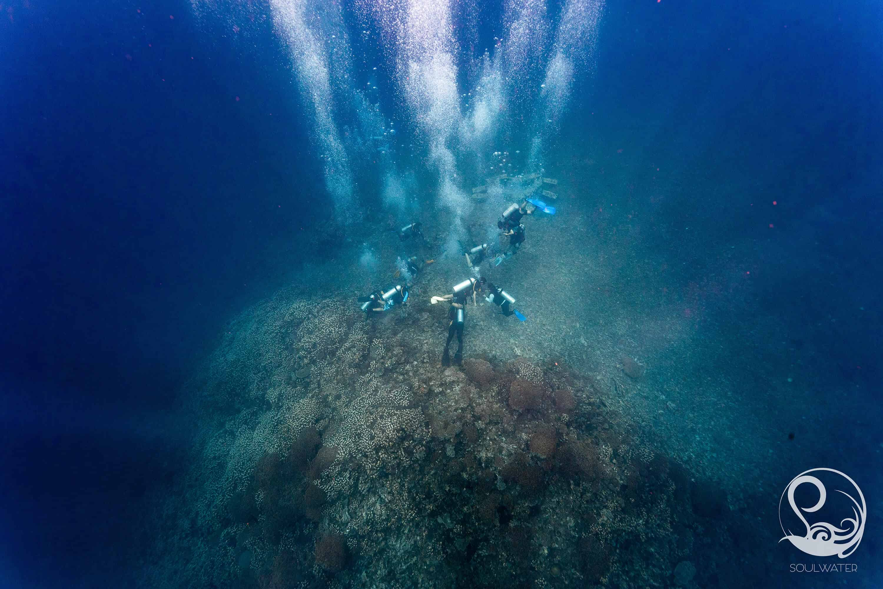 Shooting down from above over a group of divers on a coral pinnacle, blue water, bubbles